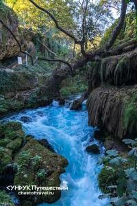 potok-vody-v-parke